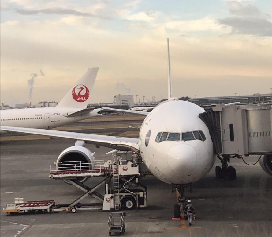 日本航空CAさん