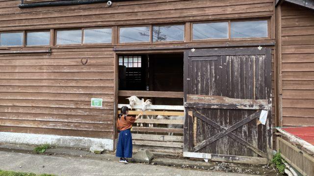 キロロリゾート,ニセコ周辺牧場,ホピの丘,動物とふれあえる牧場,北海道の牧場,小樽近くの牧場,乗馬体験