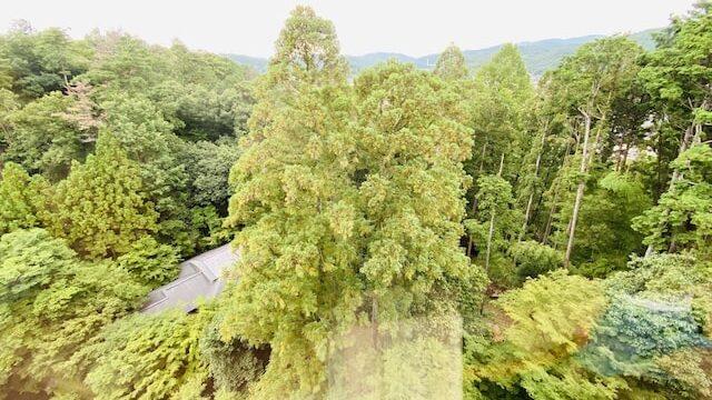 ザプリンス京都宝ヶ池オートグラフコレクションホテルの客室窓からの眺望