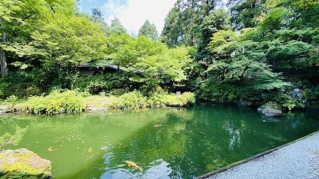 ザプリンス京都宝ヶ池オートグラフコレクションホテルの庭園の池